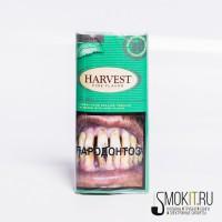 Harvest-Mint-Harvest-Mint